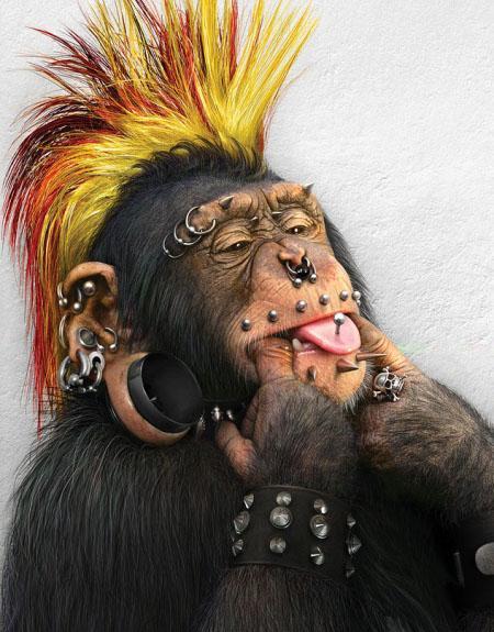 Las falsas acusaciones contra un mono.